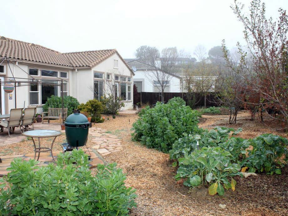 The yard was piped for a water-wise garden and has a gas line for an outdoor kitchen/BBQ