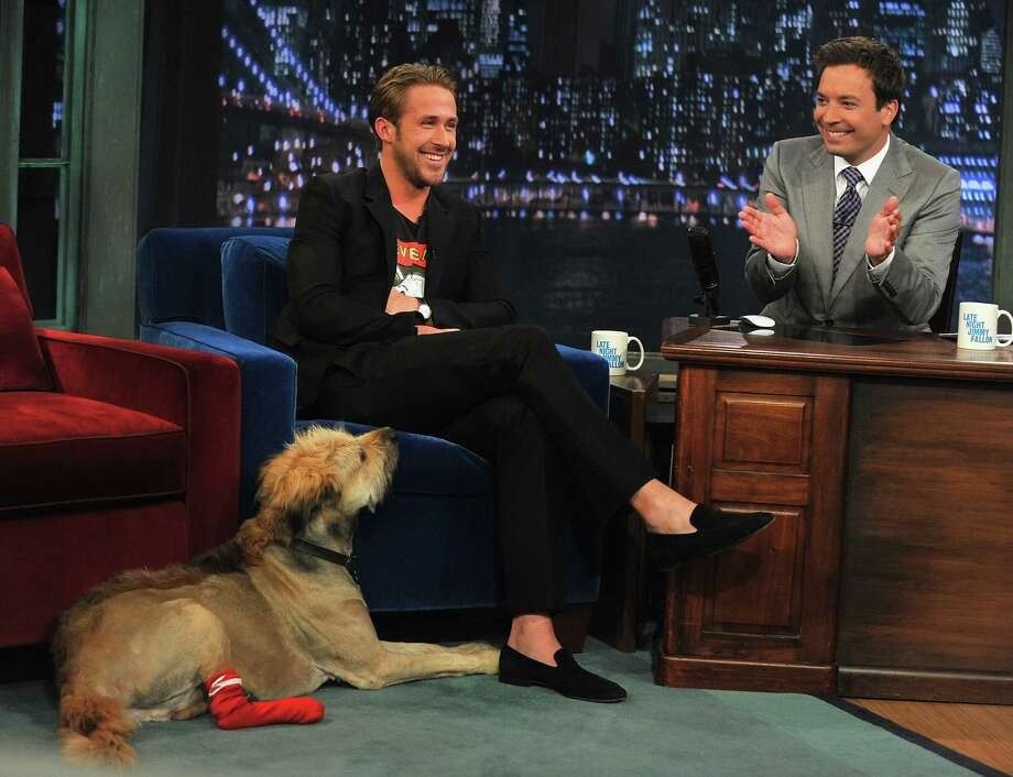 This picture doesn't show Ryan Gosling hugging his dog George, but we're betting he does. (Photo from Late Night With Jimmy Fallon on July 20, 2011). And apologies for finding no pictures of Gosling and Eva Mendes. Photo: Theo Wargo, Getty Images / 2011 Getty Images