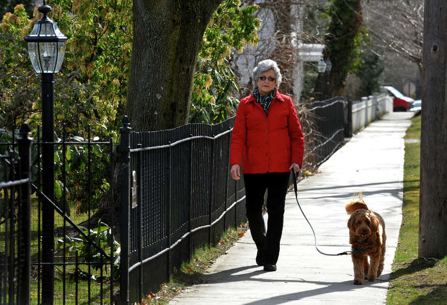 Gail Scholan walks her labradoodlle Seamus along Old Post Road in Fairfield, Conn. on Wednesday March 27, 2013. Photo: Christian Abraham / Connecticut Post