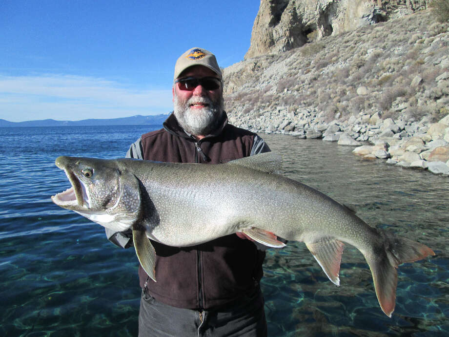 Gene St. Denis with another giant mackinaw trout out of Cave Rock at Lake Tahoe