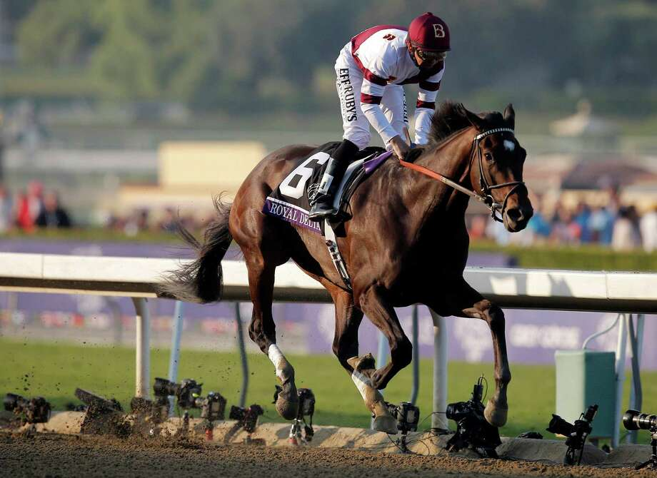 FILE - In this Nov. 2, 2012, file photo, Jockey Mike Smith stands up in the saddle after crossing the finish line aboard Royal Delta to win the Breeders' Cup Ladies' Classic horse race in Arcadia, Calif. Animal Kingdom, the 2011 Derby winner, and two-time Breeders' Cup Ladies Classic winner Royal Delta, along with Dullahan, will attempt to give American-based horses their first Dubai World Cup win since 2010, when the track was changed from dirt to a synthetic surface.  (AP Photo/Jae C. Hong, File) Photo: Jae C. Hong