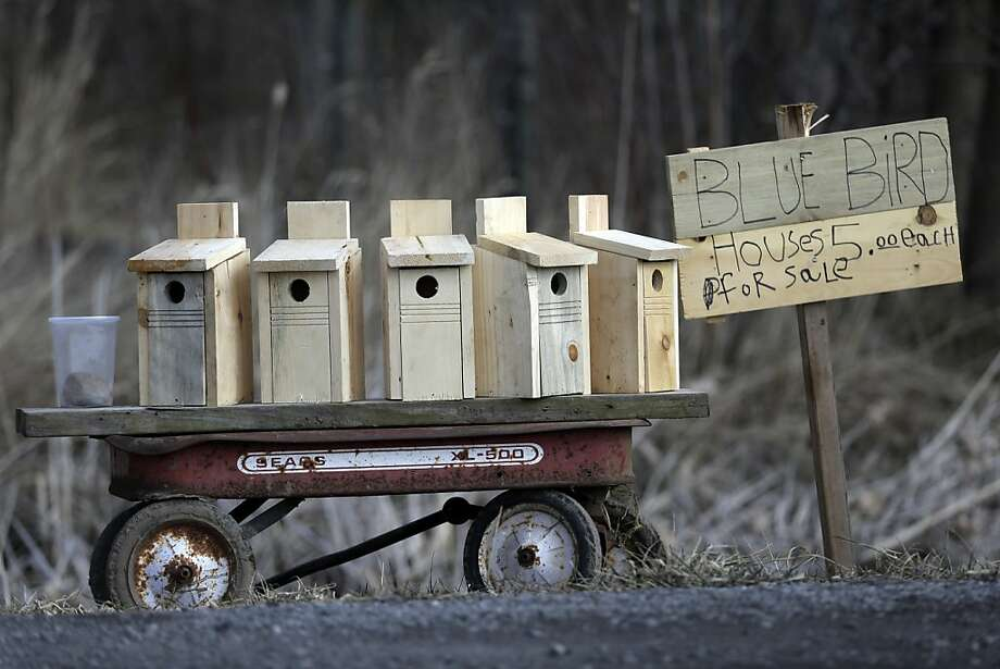 Bluebirds not included. Roadside stand, Pembroke, N.Y. Photo: David Duprey, Associated Press