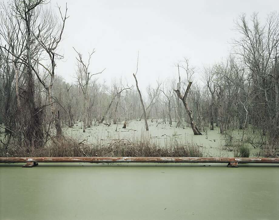 """Swamp and Pipeline, Geismar, Louisiana"" shows a rusted pipe cutting through the swamp like a foreboding of environmental harm. Photo: Richard Misrach"