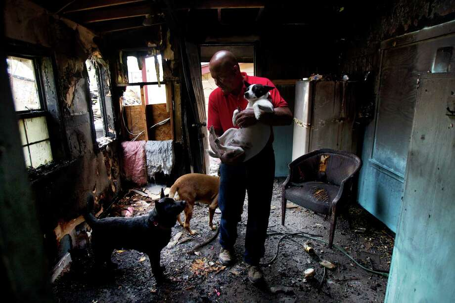 "John Branch explores his charred home Thursday with his best friends. ""They're not dogs today,"" he said. ""They're lifesavers."" Photo: Cody Duty, Staff / © 2013 Houston Chronicle"