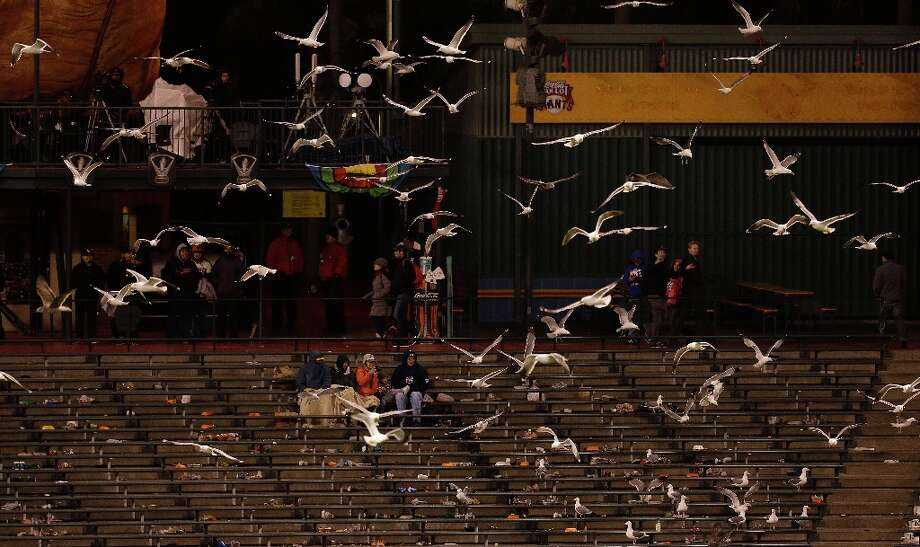 Seagulls fly over AT&T Park during the ninth inning of a semifinal game of the World Baseball Classic between the Netherlands and the Dominican Republic in San Francisco, Monday, March 18, 2013. The Dominican Republic won 4-1. Photo: Jeff Chiu, Associated Press / AP