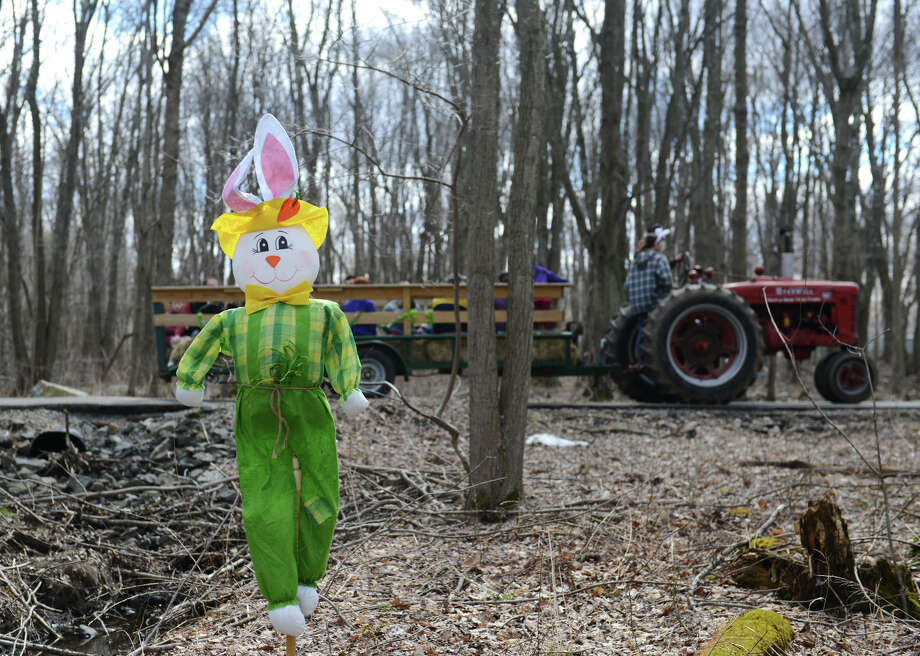 Children spot bunnies on the Bunny Watch Hayride at Glander Field Pavilion in Newtown, Conn. on Friday, March 29, 2013.  Hundreds of people enjoyed the scenic hayride on antique tractors while counting the stuffed-animal bunnies hiding in the woods along the way. The Easter Bunny greeted the children halfway through the ride, giving hugs and handshakes.  Also available was a bounce house, slide, face painting and many other children's activities. Photo: Tyler Sizemore / The News-Times