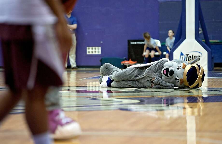 You know it's a boring game when the mascot falls asleep at center court. After they awoke the James Madison Duke Dog from his beauty rest, James Madison went on to defeat Fordham, 77-61, in a women's NIT game in Harrisonburg, Va. Photo: Jason Lenhart, Associated Press