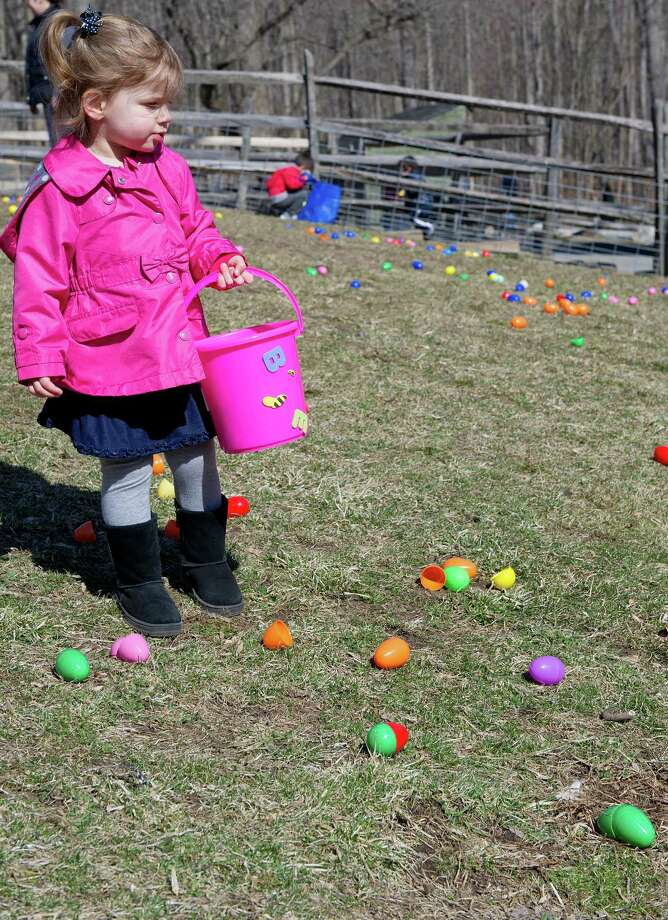 Lauren Murphy, 2, collects eggs during the 9th Annual Heckscher Farm Egg Hunt on Saturday, March 30, 2013. Photo: Lindsay Perry / Stamford Advocate