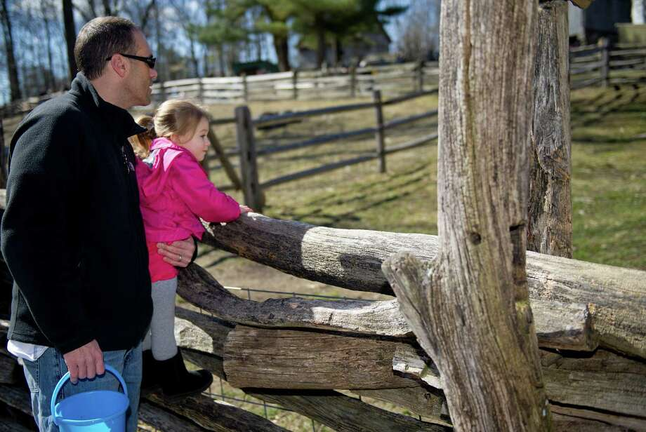 Brooke Murphy, 2, and her father, Mike, look at goats during during the 9th Annual Heckscher Farm Egg Hunt on Saturday, March 30, 2013. Photo: Lindsay Perry / Stamford Advocate