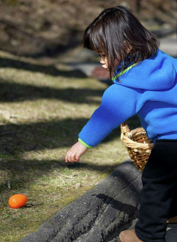 Hailey Rietz, 2, collects eggs during the 9th Annual Heckscher Farm Egg Hunt on Saturday, March 30, 2013. Photo: Lindsay Perry / Stamford Advocate