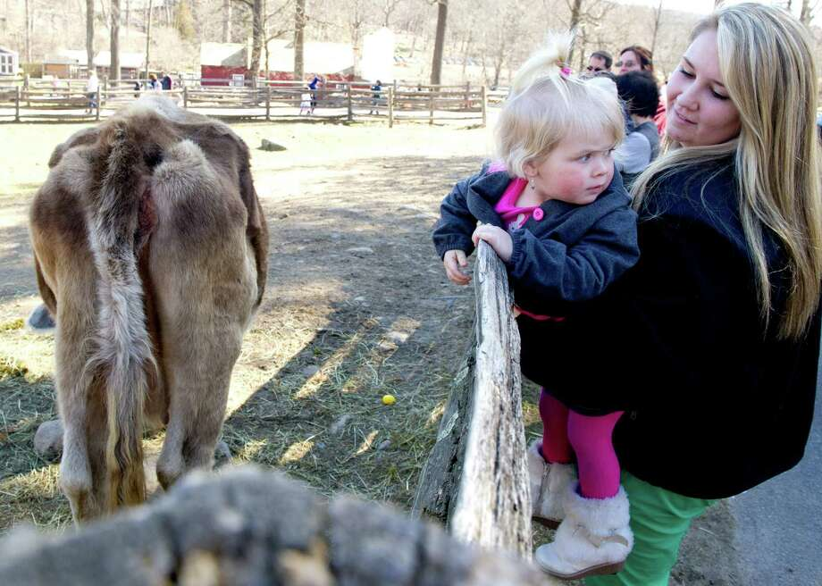 Courtney Grimm holds her sister, Carly Grimm, 2, as they look at animals during the 9th Annual Heckscher Farm Egg Hunt on Saturday, March 30, 2013. Photo: Lindsay Perry / Stamford Advocate