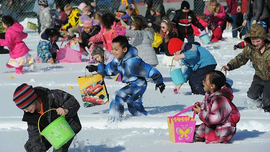 Children dashed through the snow while picking up about 10,000 plastic eggs that contained candy and prizes, including bicycles, during the annual Easter Egg Hunt at the Eagle River Lions Club Community Park in Anchorage, Alaska, on Sunday, March 31, 2013.  (AP Photo/Anchorage Daily News, Bill Roth) Photo: Bill Roth, Associated Press
