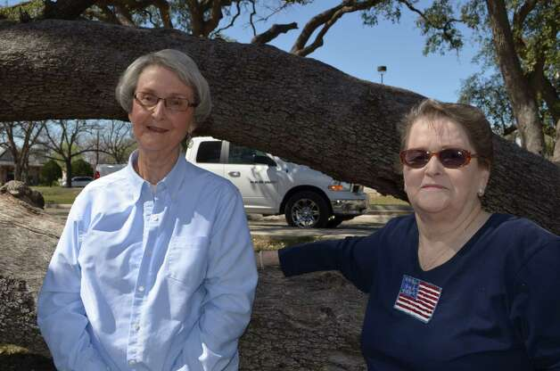 Now: Nell Griffin-Graham, 79, is a retired school teacher while her sister Sydney Davenport, 77, is a retired bookkeeper. In February, the sisters re-created a photo taken in 1939 of them climbing a large tree in their grandmother's Reagan Wells yard with this one at the El Progresso Memorial Library in Uvalde. Photo: Heard, Reader Submission