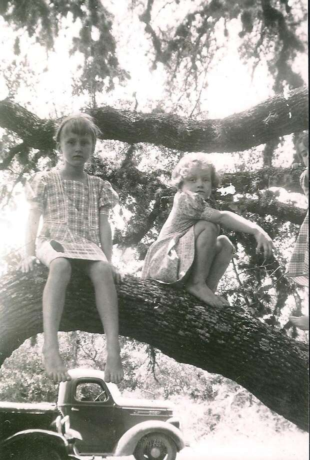 Then: In 1939, the Heard sisters, Nell, 6, and Sydney, 4, play in a large tree in their grandmother s Reagan Wells yard. Photo: Heard, Reader Submission