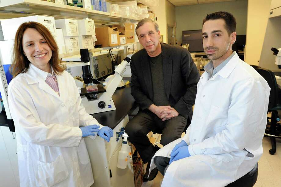 Scientists Sally Temple, left, Jeffrey Stern, center, and Christopher Fasano in the laboratory on Wednesday, March 27, 2013, Neural Stem Cell Institute in Rensselaer, N.Y. The trio developed growth nutrients for stem cells. (Cindy Schultz / Times Union) Photo: Cindy Schultz / 00021755A