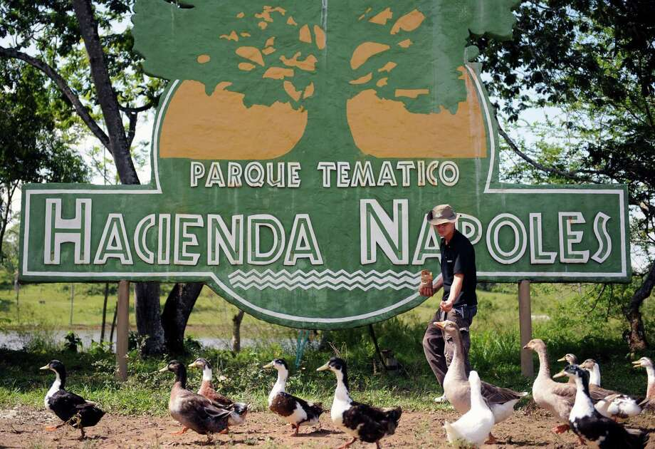 A man feeds ducks inside the Napoles ranch theme park in Puerto Triunfo, Colombia on June 21, 2009. The Napoles ranch, which has an area of 2,200 hectares and was built by the late drug trafficker Pablo Escobar, has turned into a theme park with a memorial museum with differents exotic animals and a Jurassic Park. Photo: AFP/Getty Images
