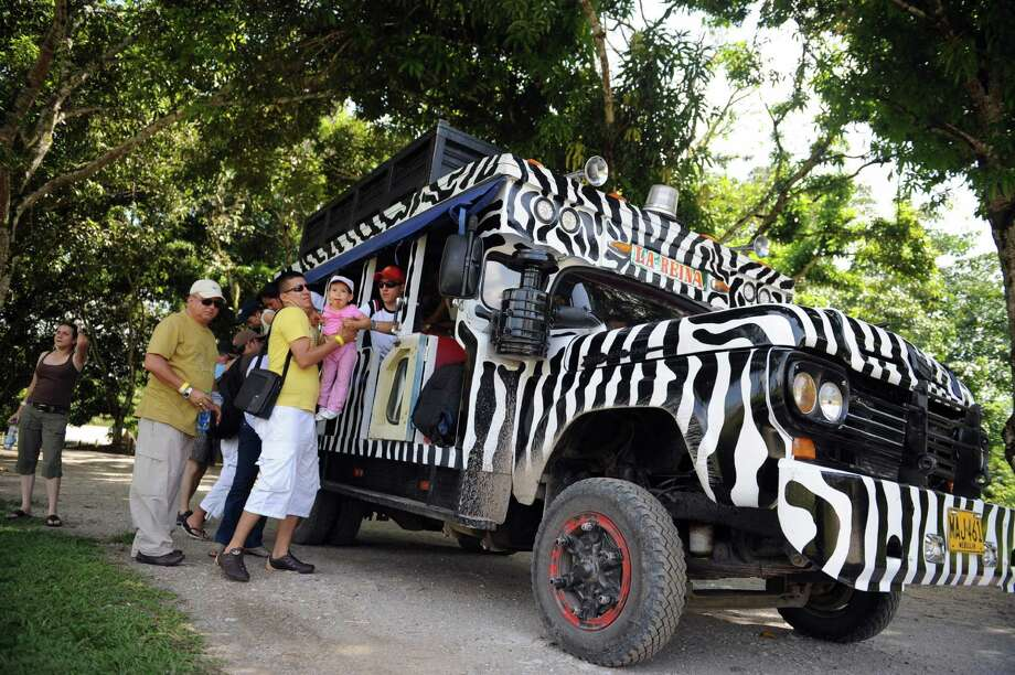 Tourists get down from a Zebra truck inside the Napoles ranch theme park in Puerto Triunfo, Colombia on June 21, 2009. The Napoles ranch, which has an area of 2,200 hectares and was built by the late drug trafficker Pablo Escobar, has turned into a theme park with a memorial museum with differents exotic animals and a Jurassic Park. Photo: AFP/Getty Images