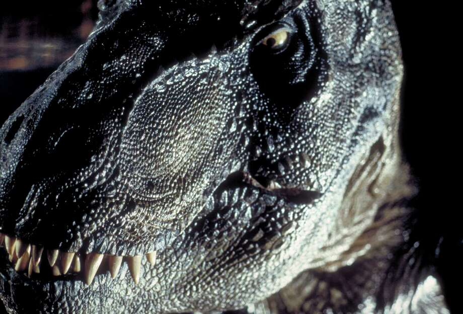 Didn't find the 1993 dinosaur movie 'Jurassic Park' scary enough? This week, you'll be able to see it in 3D. Photo: Murray Close, Getty Images / 2011 Murray Close