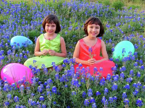 Twins Lyndsay and Lydia Strickland, 8, enjoy the flowers in the Harris County Flood Control Basin off North Gessner. (Mona Strickland) Photo: Picasa, Reader Submission