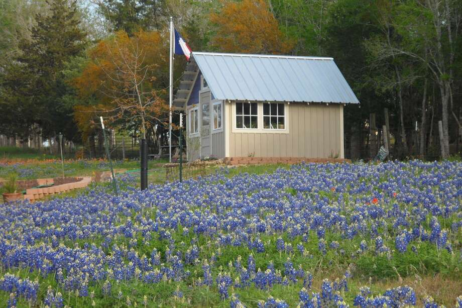 Spring in Chappell Hill. Photo: Reader Submission / COPYRIGHT, 2010