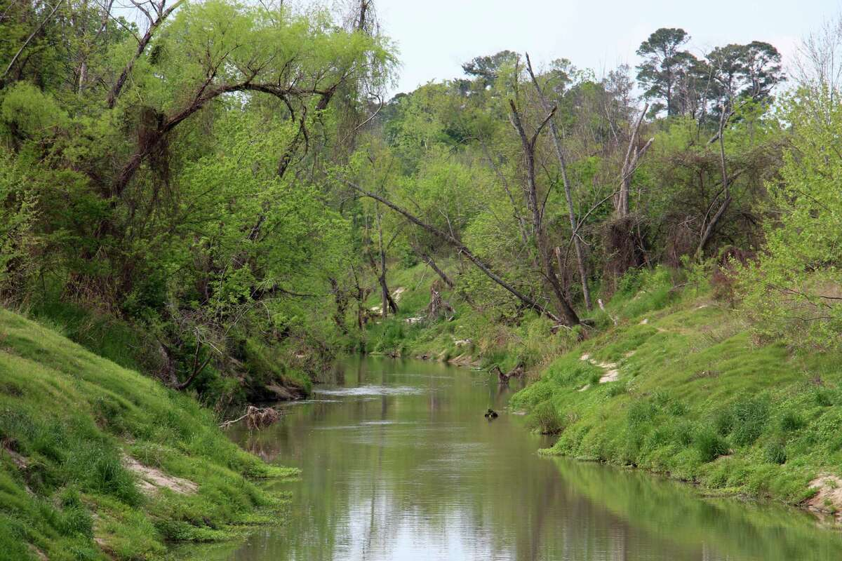 Cypress Creek meanders through Meyer Park, creating a nature preserve residents and parks leaders hope can become part of a network of recreational and natural habitats along the 40-mile stretch.