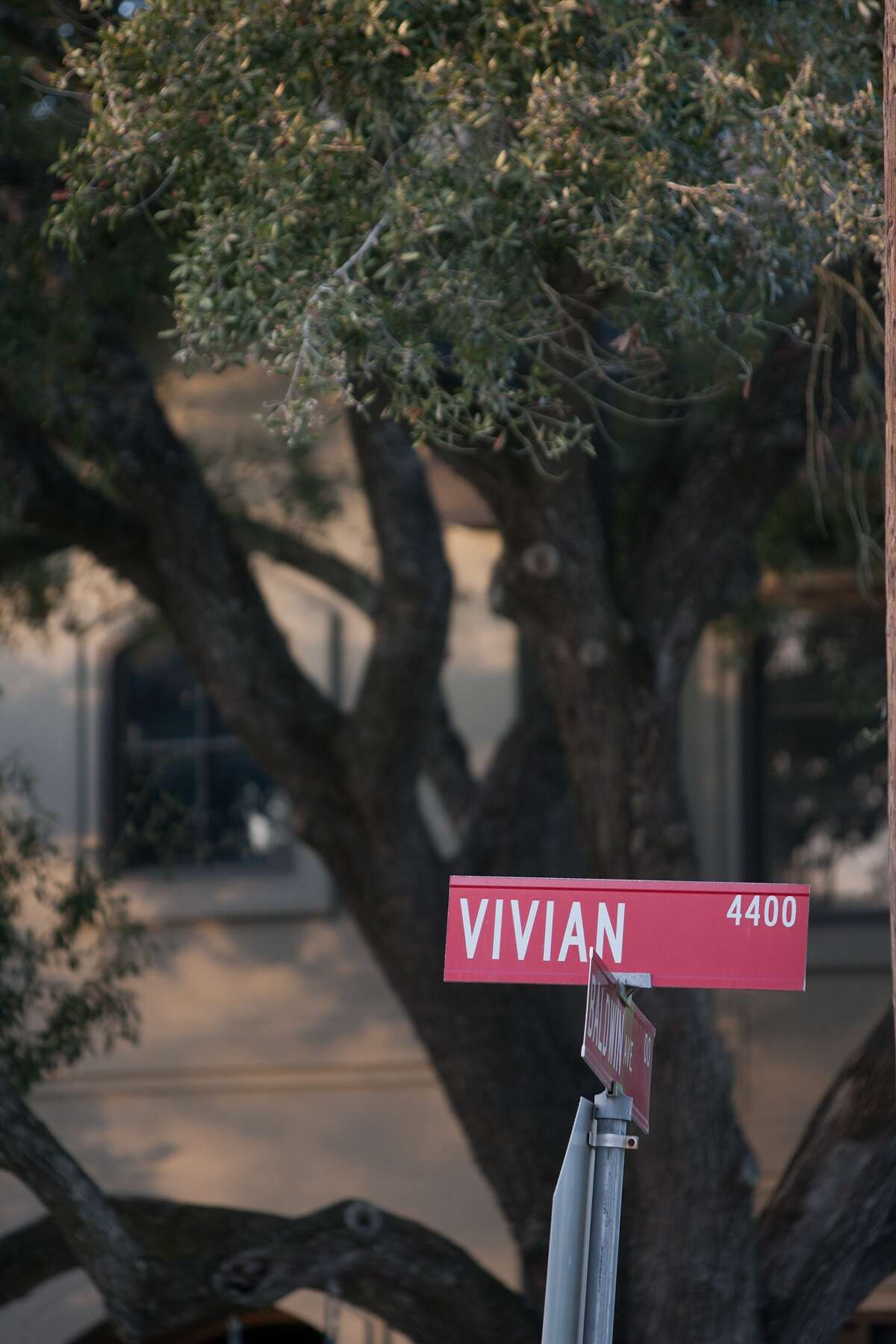 This is one of the many street names in Bellaire that come from women's names.