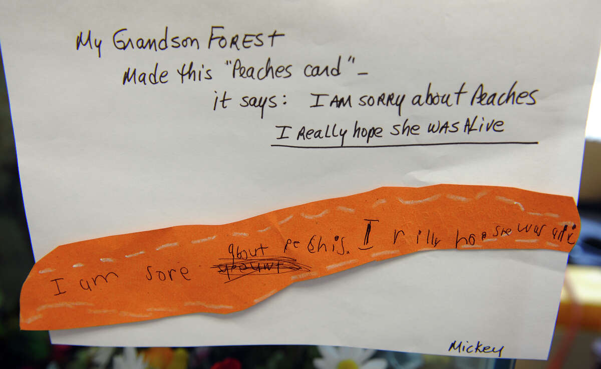 A youngster's homemade card expressing sympathy for Peaches the snake is on display on the tank where she lived for eight years at the Huntington Branch Library in Shelton, Conn. on Tuesday April 2, 2013. Peaches died recently after someone poured a cleaning solvent into her tank and onto her causing severe burns.