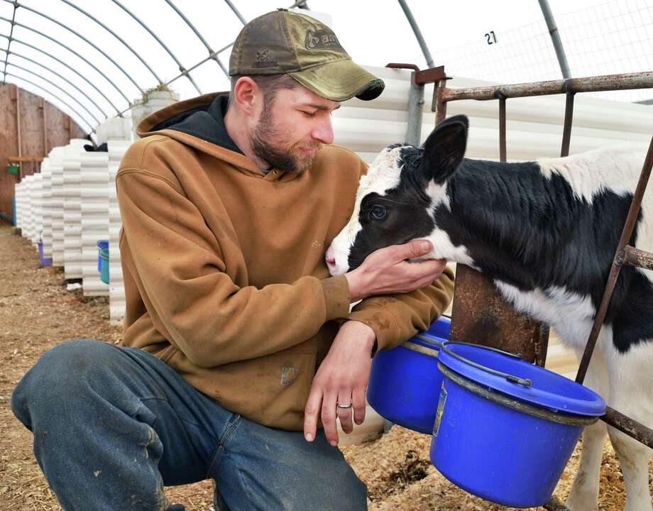 Dairy farmer Ryan Skoda with a calf on his family's Triple Creek Farm Tuesday April 2, 2013, in Taghkanic N.Y. (John Carl D'Annibale / Times Union) Photo: John Carl D'Annibale / 00021833A