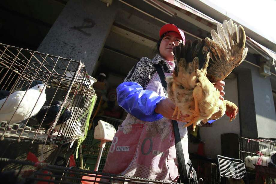 A vendor holds a chicken at a wholesale market in Shanghai. China is experiencing an outbreak of a rare bird flu, H7N9, which so far has killed two people. Photo: Associated Press