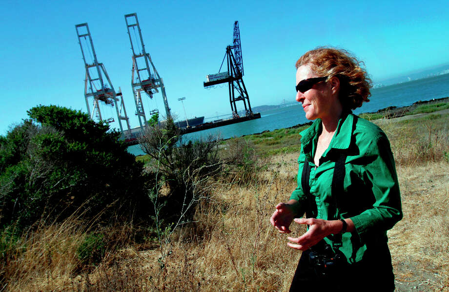 Noreen Weeden was the first person to notice a pair of ospreys which are nesting in the crane at the end of Pier 80 (center, black), shown in San Francisco, Calif., Tuesday, July 3, 2012.  The osprey nest is the only one known in the area.  Weeden was volunteering in the area with the Golden Gate Audubon Society when she noticed the raptors. Photo: Sarah Rice, Special To The Chronicle / ONLINE_YES