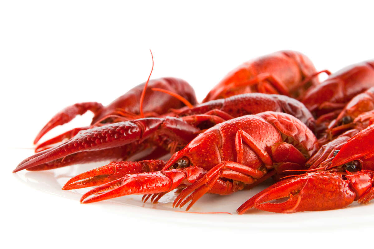 April is a great month to celebrate - and eat - crawfish.