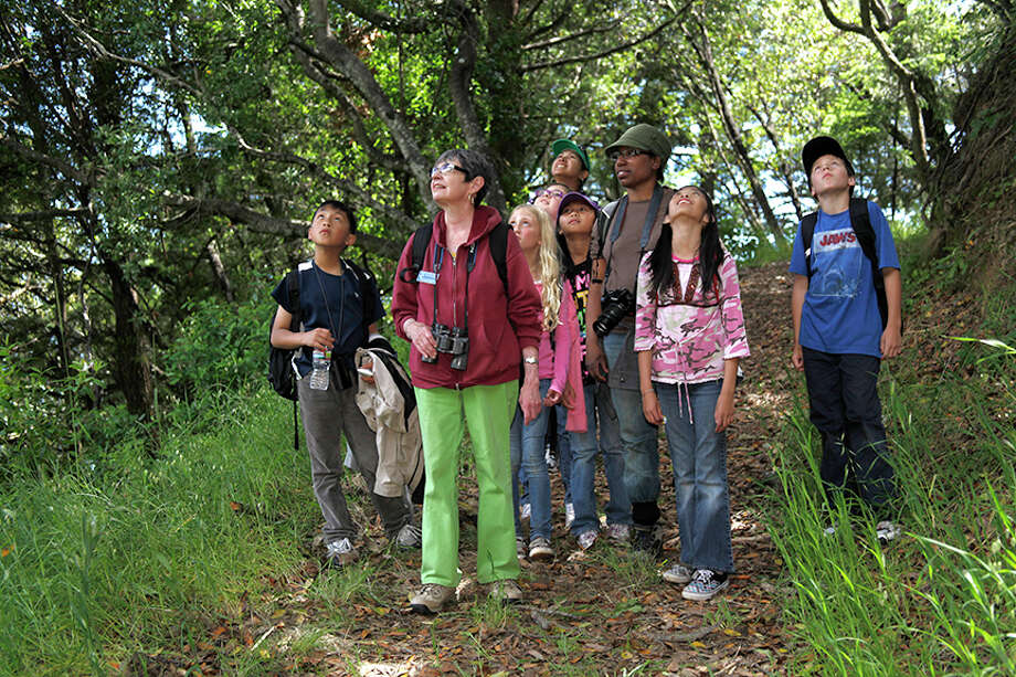 A group of kids watch the trees for herons and egrets at Audubon Canyon Ranch's Martin Griffin Preserve.