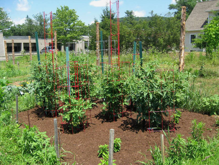 The Kent Land Trust has announced it is accepting registration for the fourth season of the townís community garden.  Courtesy of Kent Land Trust Photo: Deborah Rose