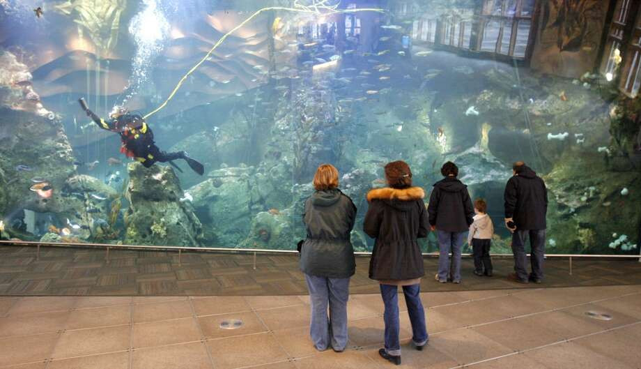 The Seattle Aquarium will see more kids if King County voters approve Prop. 1, a sales tax hike on the August 1 ballot.  Should we be increasing a regressive tax when local arts support is already generous?