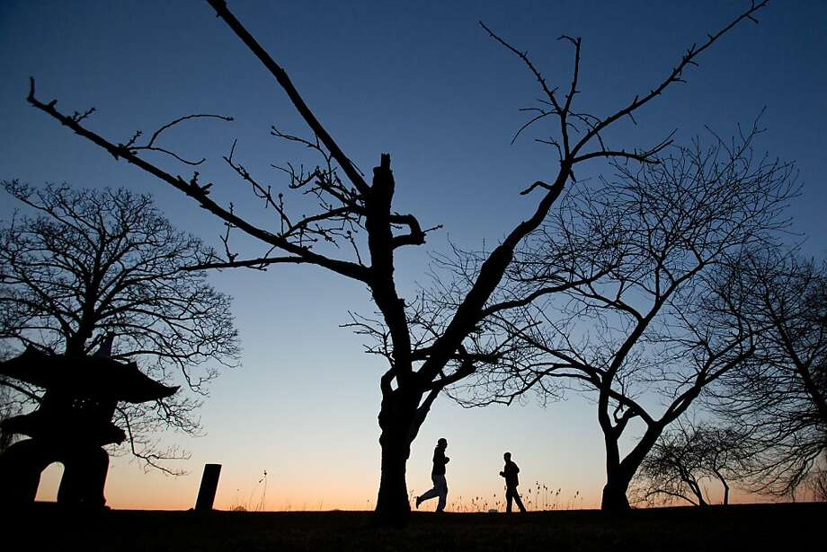 TOPSHOTS  Joggers run before the sunrise underneath leafless trees along the banks of Alster Lake in Hamburg, Germany, on April 3, 2013.  AFP PHOTO / CHRISTIAN CHARISIUS   GERMANY OUTCHRISTIAN CHARISIUS/AFP/Getty Images Photo: Christian Charisius, AFP/Getty Images
