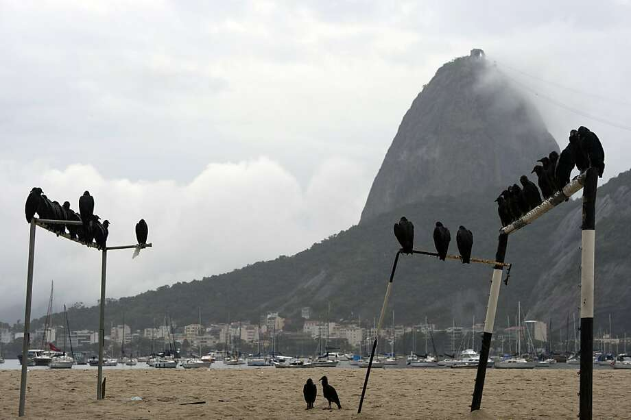 Buzzard beach:The next soccer game on the sands of Rio de Janeiro may be to the death, judging from these goalpost spectators. Photo: Christophe Simon, AFP/Getty Images