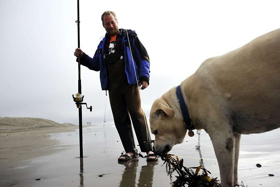 He's a good dog, although maybe not the brightest K-9 in the kennel: Crab fisherman Bradford Jett watches Harris the Lab chew seaweed at Ocean Beach in San Francisco. Photo: Michael Short, Special To The Chronicle