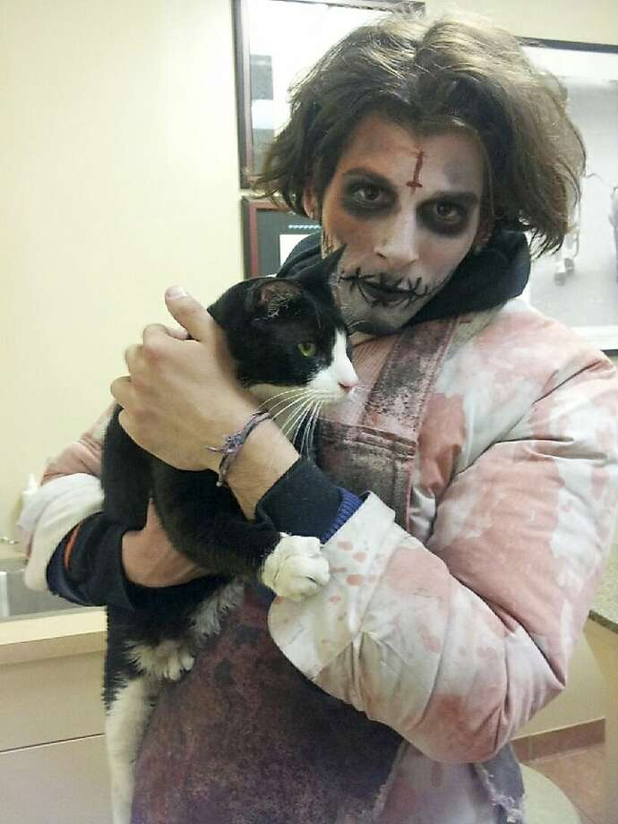 He's not one of those amateur zombies, he's a professional: Jeremy Zelkowitz, who's employed as a zombie at a year-round haunted house in New York, takes a cat he named Disaster to the vet. He found the stray feline crossing 42nd Street in Manhattan. Photo: Associated Press