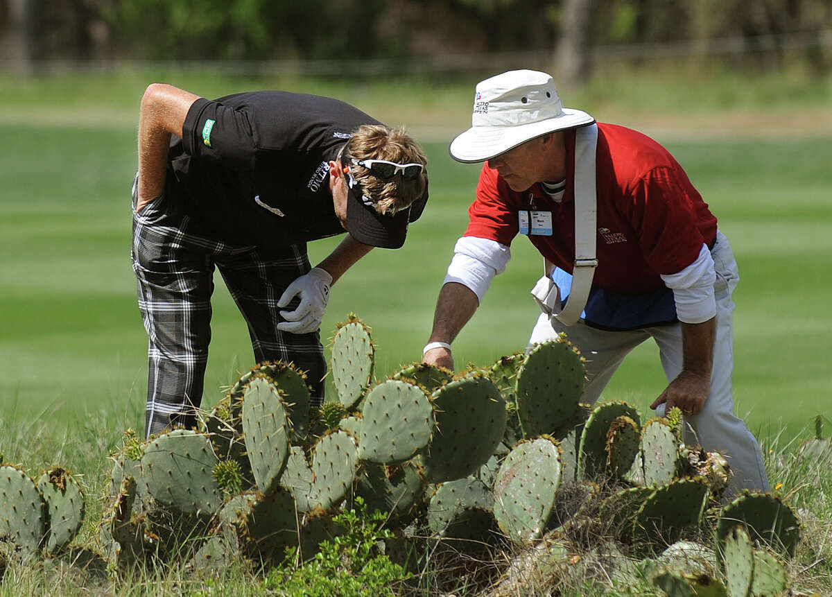 Golfer David Lynn and a course official look for his ball in a cactus cluster by the ninth hole during the second round of the Valero Texas Open at TPC San Antonio's AT&T Oaks Course on Friday, April 5, 2013.