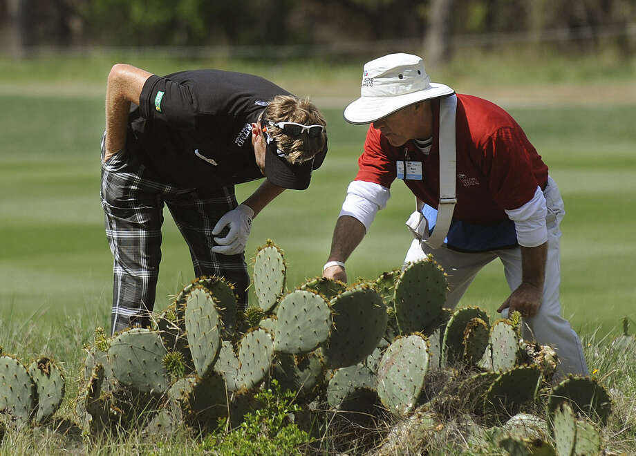 Golfer David Lynn (left) and a course official look for his ball in a cactus cluster by the ninth hole. Photo: Billy Calzada / San Antonio Express-News