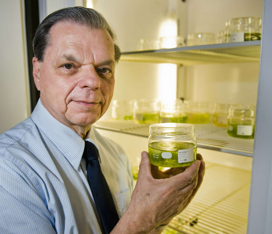 University of Texas Professor Jerry Brand with containers of algae in the school's biology building. Photo: Ashley Landis, Houston Chronicle
