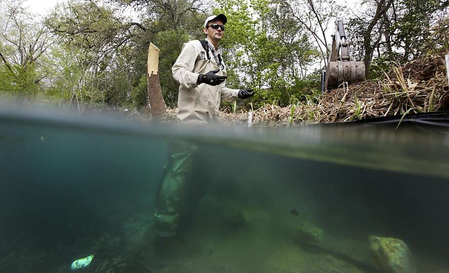 In this Wednesday March 27, 2013 file photo, Ed Oborny from BIO-WEST inspects progress on the removal of an island from the Comal River in New Braunfels, Texas. BIO-WEST is working on a project to help restore the endangered species habitat in the original channel of the River. (AP Photo/The San Antonio Express-News, Bob Owen)   RUMBO DE SAN ANTONIO OUT; NO SALES Photo: Bob Owen, Associated Press