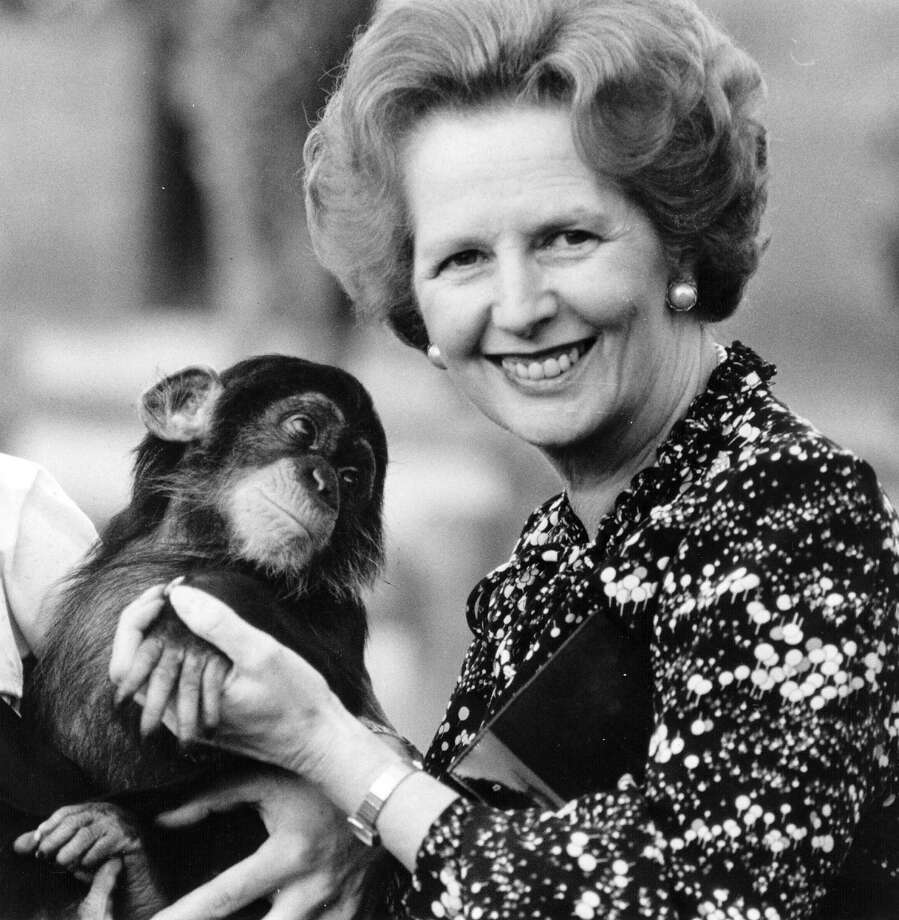 British prime minister Margaret Thatcher (right) holding a chimpanzee in 1985. Photo: Keystone, File / Hulton Archive