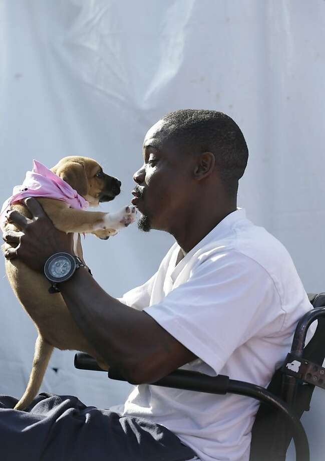 Choose me! Terrance Thompson kisses a puppy during a pet adoption event at Tropical Park in Miami. The SPCA joined forces with Miami-Dade Animal Services, the Humane Society, the Cat Network and rescue groups from all over south Florida in an effort to find homes for hundreds of homeless animals. Photo: Wilfredo Lee, Associated Press
