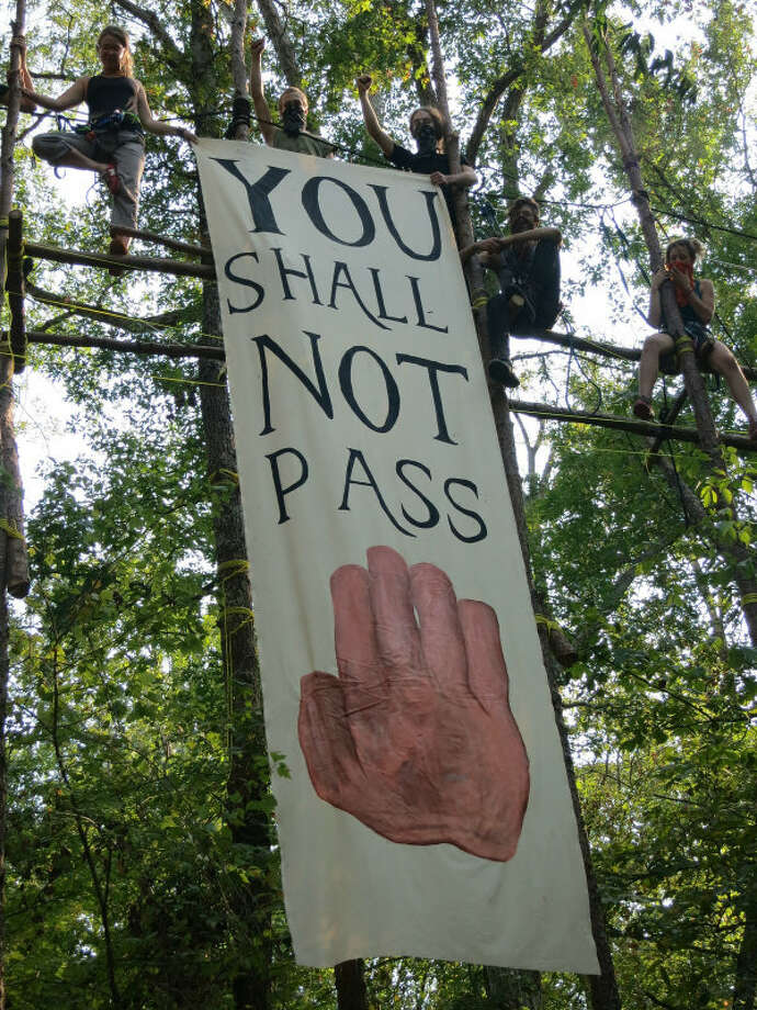 Eight people climbed 80 feet into trees in the path of Keystone XL construction, and pledged not to come down until the pipeline is stopped for good. Photo: Tar Sands Blockade