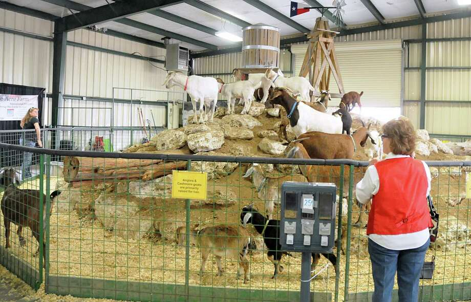 Spectators enjoy the goat exhibit during the 56th Annual Montgomery County Fair and Rodeo. Carnival rides, live music and a variety of food and other vendors round out the event. Photo: David Hopper, Freelance / freelance