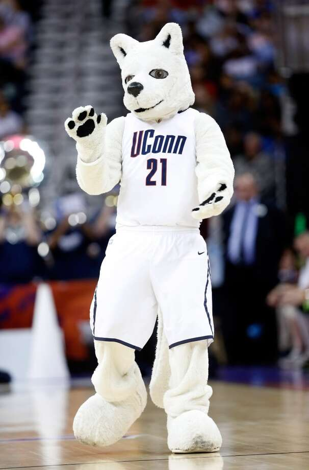 The Connecticut Huskies mascot walks on the floor in the first half against the Louisville Cardinals during the 2013 NCAA Women\'s Final Four Championship at New Orleans Arena on April 9, 2013 in New Orleans, Louisiana.