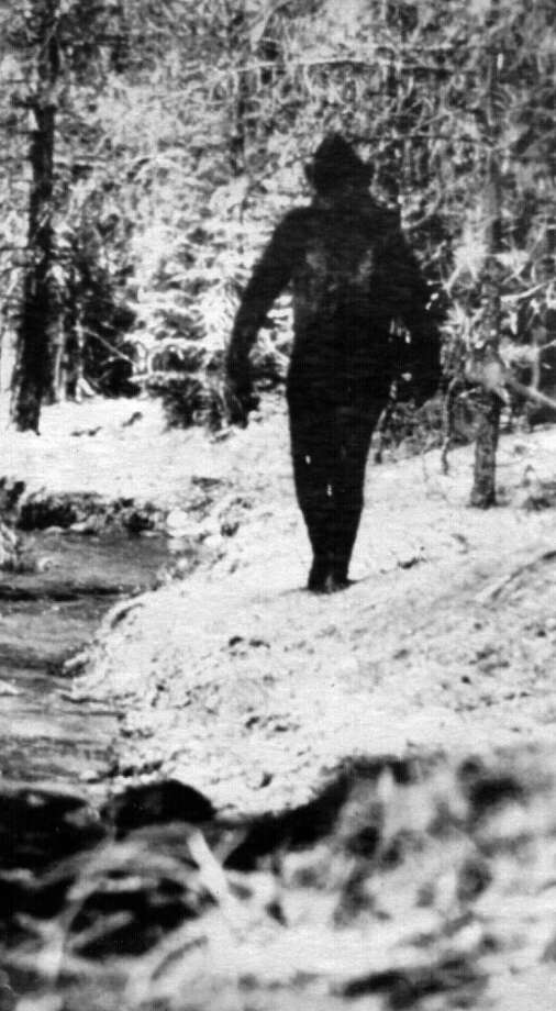 This image comes from the 1976 movie, ''The Legend of Bigfoot,'' made by an animal tracker named Ivan Marx who said this really, really was a Bigfoot in Washington. Photo: Getty Images
