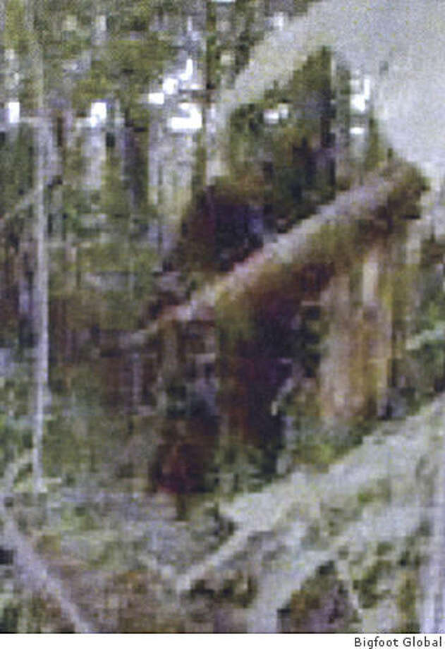 A close-up of the 2008 ''Bigfoot of Georgia.'' Photo: Bigfoot Global, LLC