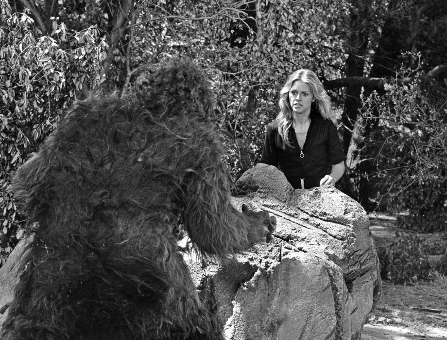 Now for some photos showing the  important cultural significance of Bigfoot. In 1976, the ''Bionic Woman'' (pictured) had to turn to Bigfoot to help save the ''Six Million Dollar Man's'' life. Photo: ABC Via Getty Images